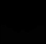 Angel Champagne Logo